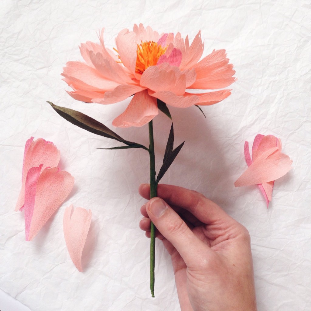 Khoollects fve tips to make pimped out paper flowers susan beech the paper artist behind a petal unfolds is an expert at making even the limpest sheet of crepe paper come to life and blossom into an mightylinksfo Gallery