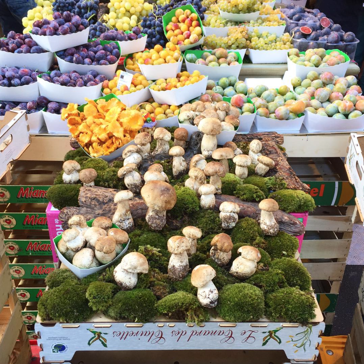 French Farmers Markets - Lisa Edoff