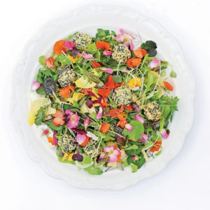 Recipe: Avocado 'Truffle' Salad